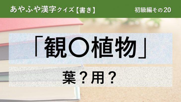 意外と間違える!あやふや漢字クイズ!【書き】初級編 その20