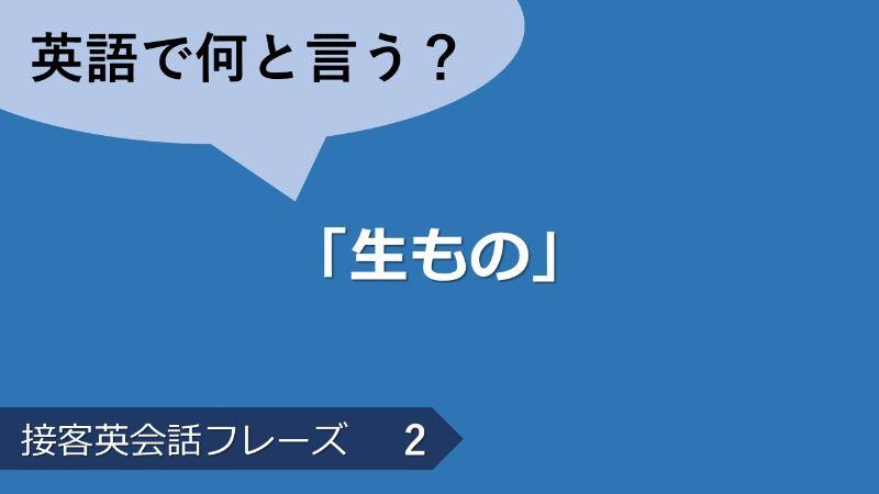 「生もの」は英語で?接客英会話フレーズ 【販売】 その2