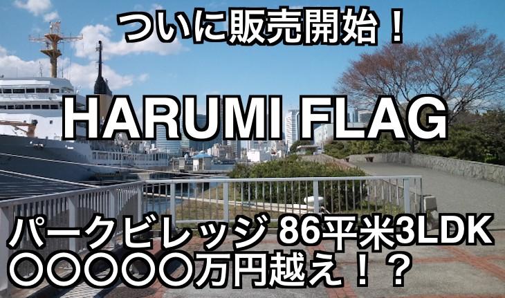 ついに販売開始!今世紀最大級大規模開発 HARUMI FLAGのお値段は?